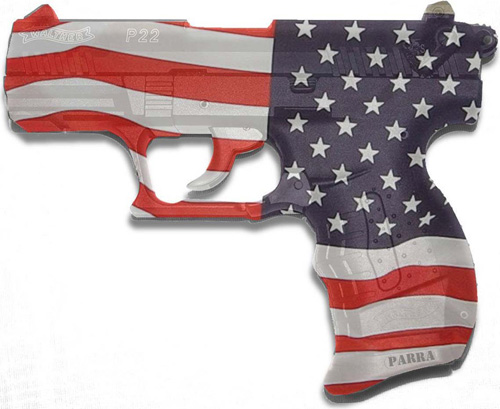 the gun control in the america society and the issues of the gun ownerships Gun control definition is  an american nonprofit organization that advocates for gun control and against gun  subscribe to america's largest dictionary and get.